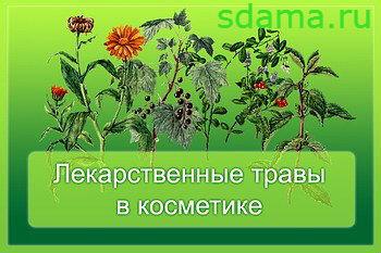 Травы в косметике